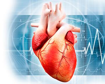 Стресс и риск развития сердечно-сосудистых заболеваний: есть ли связь?